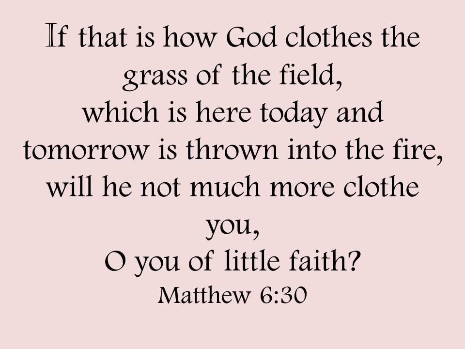 Faith Matthew 6:30