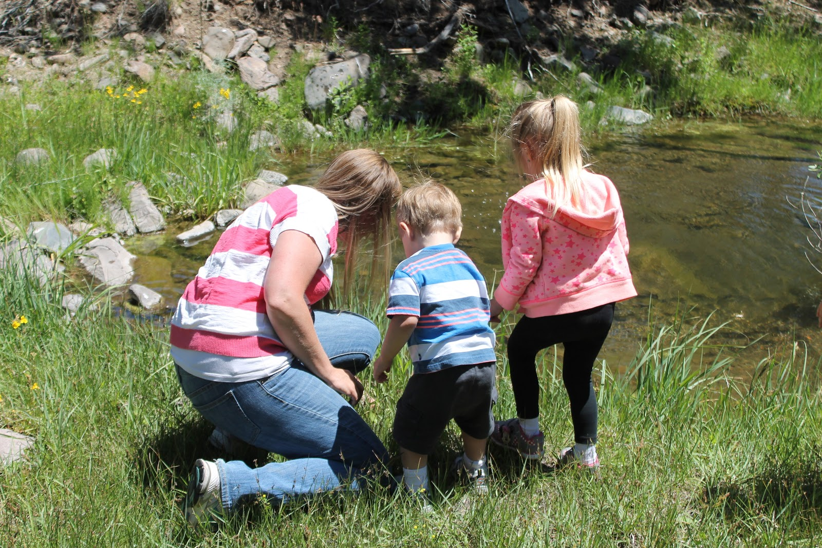 We love to explore new creeks. It's one way we work as a family to live naturally