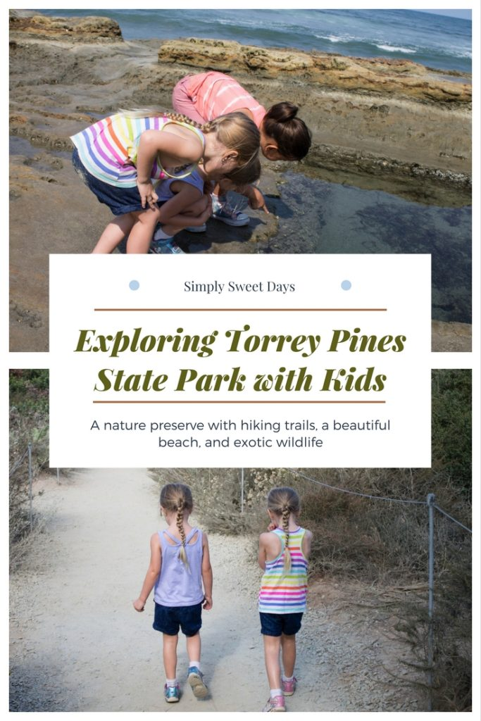 Planning a trip to San Diego California with kids? One of my favorite things to do in America's Finest City is explore Torrey Pines State Park. It's got easy hiking trails and beautiful beaches, and is practically free since yuo only have to pay for parking!