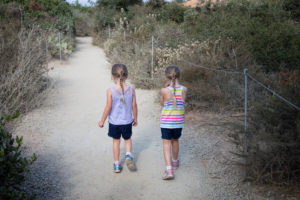 Visiting Torrey Pines State Park with Kids